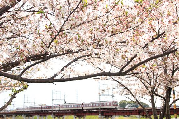 2012/4/15 近鉄南大阪線 矢田~河内天美