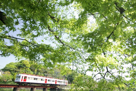 2012/4/28 和歌山電鐵貴志川線 大池遊園