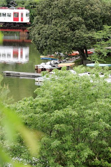 2012/5/12 和歌山電鐵貴志川線 大池遊園