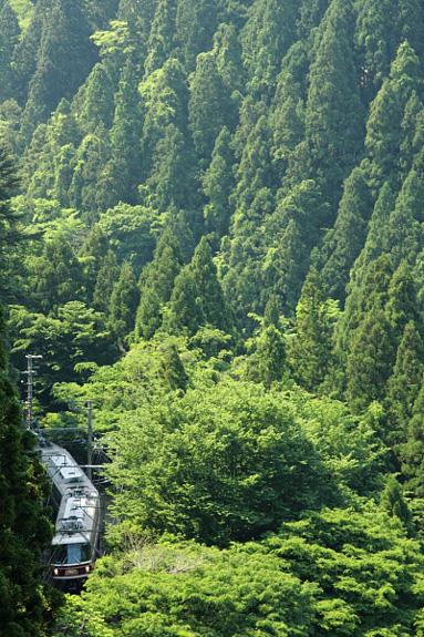 2012/5/27 南海高野線 紀伊神谷~極楽橋