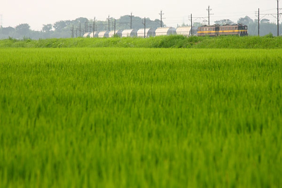 2010年8月上旬 三岐鉄道三岐線 三里~丹生川