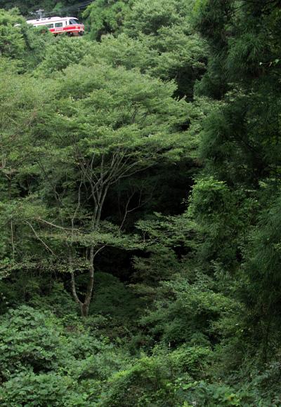 2012/9/16 南海高野線 紀伊神谷~極楽橋