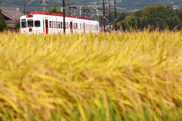 2009年10月中旬 和歌山電鐵貴志川線 大池遊園~西山口