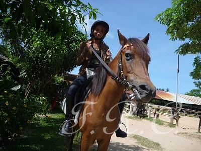 プーケット 乗馬