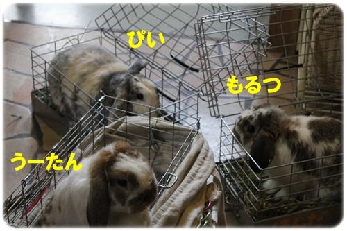 2005_20120516222053.jpg