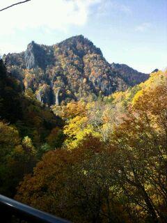 電気バスから見た岩肌の紅葉…