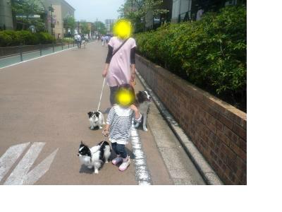snap_pinksubmarine_201252192126.jpg