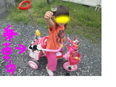 snap_pinksubmarine_201254175919.jpg