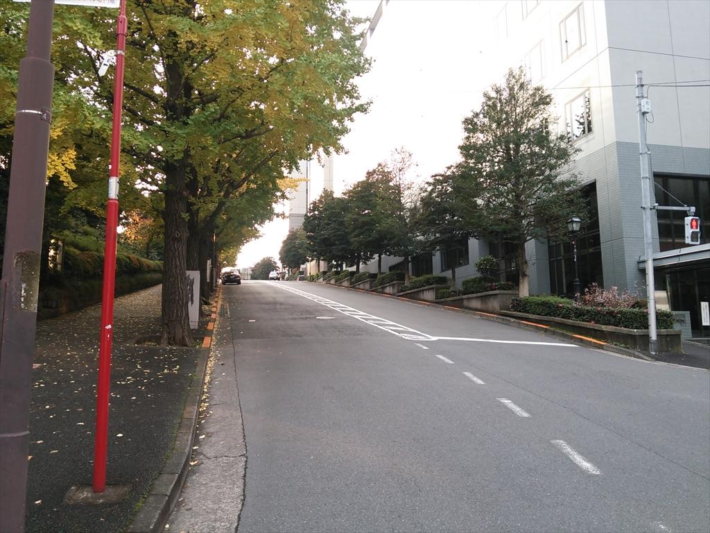 DSC_3035_R.jpg