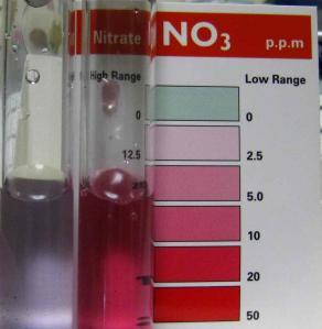 硝酸塩90と2号