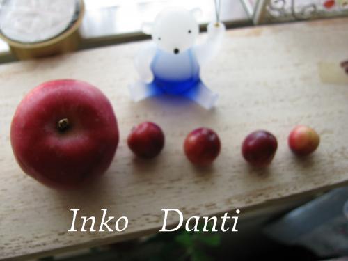 姫りんごとクランベリー