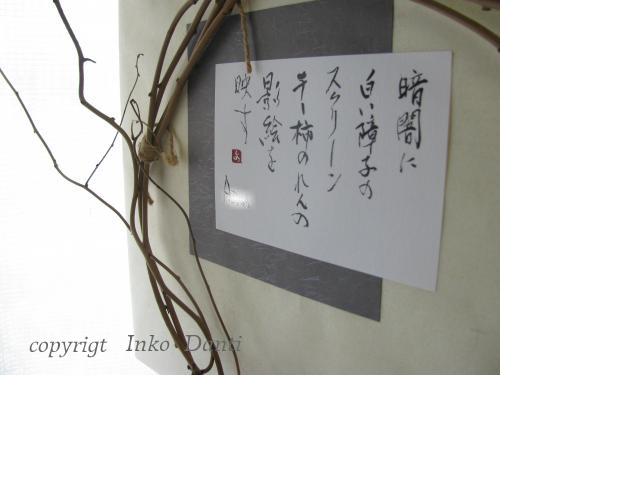 snap_piyopiyodaigaku_2012102204713.jpg