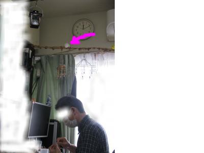 snap_piyopiyodaigaku_201251154646.jpg
