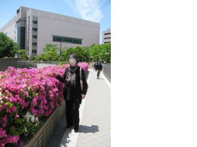 snap_piyopiyodaigaku_201251182718.jpg