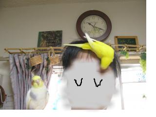 snap_piyopiyodaigaku_20127312928.jpg