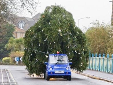 G-Wiz-tows-Christmas-tree.jpg