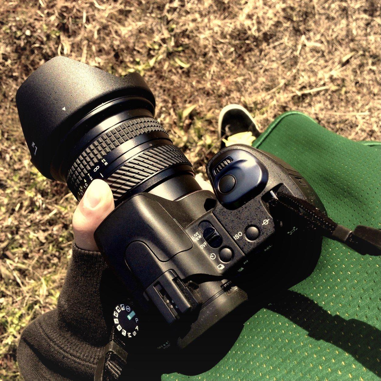 BP3jh-6D.jpeg