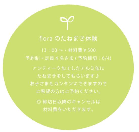 たねまき_03