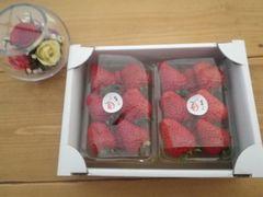 [写真]ポレポレ苺の2パック入り小箱