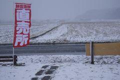[写真]雪景色の中でたなびく幟(のぼり)