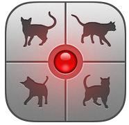 human_cat.jpg