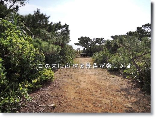 DSCN2111.jpg