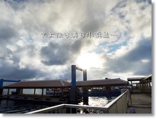 DSCN2336.jpg