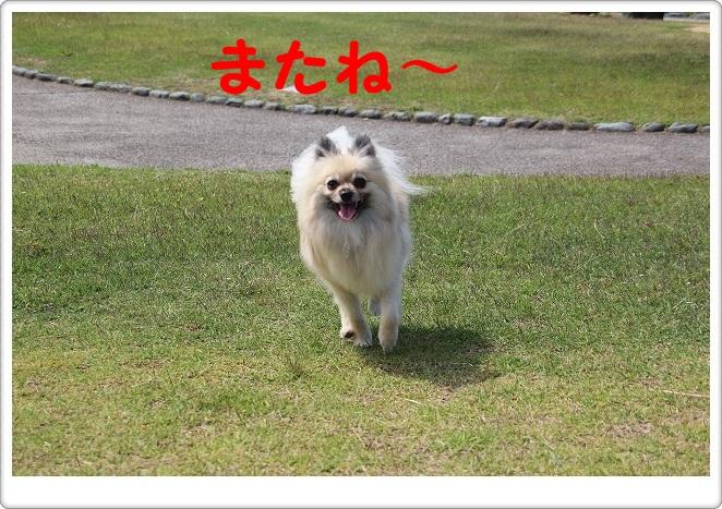 026_20120705193524.jpg