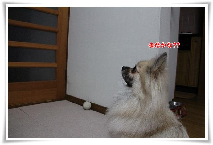 078_20121201225031.jpg
