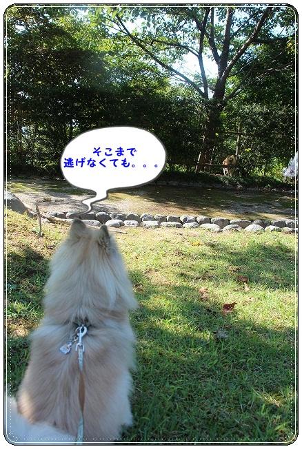 104_20120925150512.jpg