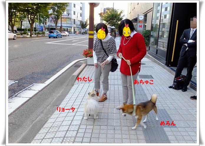 133_20121026210225.jpg
