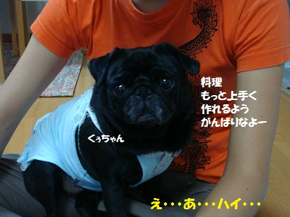 DSC00132_20110831010343.jpg