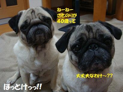DSC00203_20110831005147.jpg