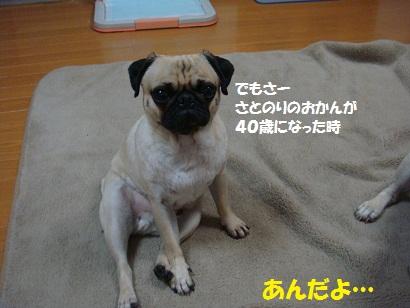DSC00211_20110831005147.jpg