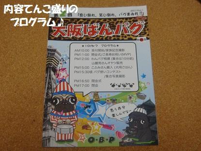 DSC00224_20130309044938.jpg