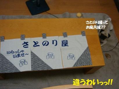 DSC00285_20110831000041.jpg