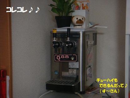 DSC00432_20130418023029.jpg