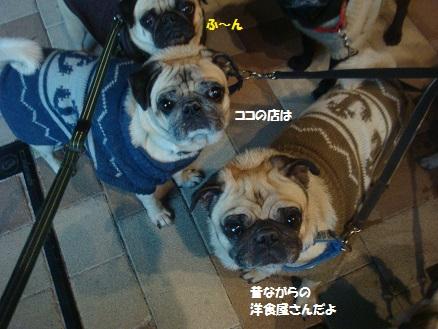 DSC00858_201411200350442ed.jpg