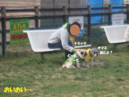 DSC00885_20130421004031.jpg