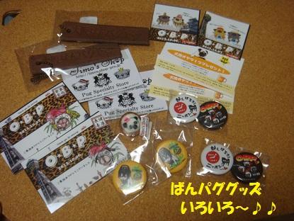 DSC00903_20130325043131.jpg