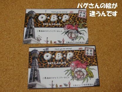 DSC00907_20130325043131.jpg