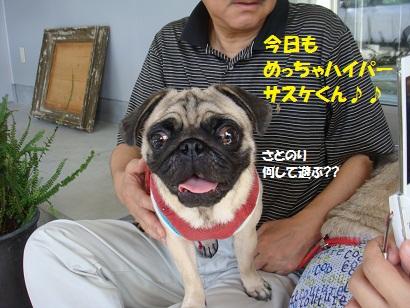 DSC00986_20130528034537.jpg