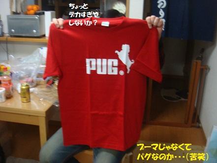 DSC00986_201411291856259fd.jpg