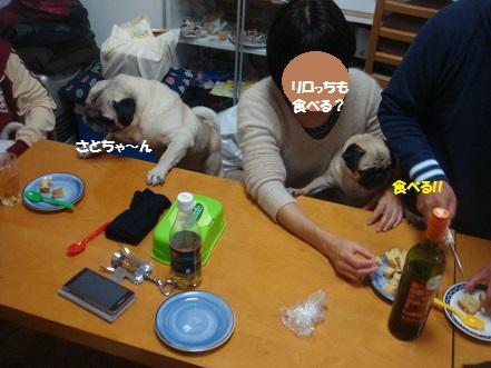 DSC01284_2014112919584946a.jpg