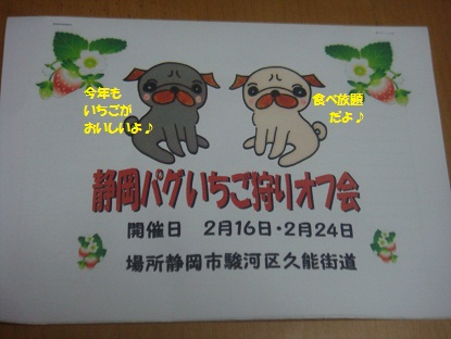 DSC01294_20130403201851.jpg