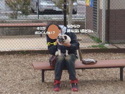 DSC01355.jpg