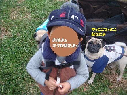 DSC01497_20141204032955b11.jpg