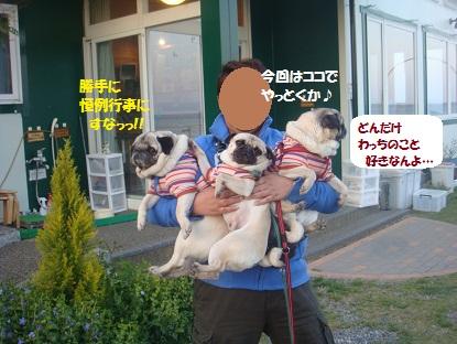 DSC01786_20130515190832.jpg