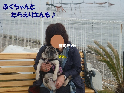 DSC02018_20130521030023.jpg