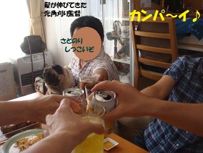 DSC02853_20130117204246.jpg
